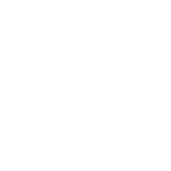 Network Auctions